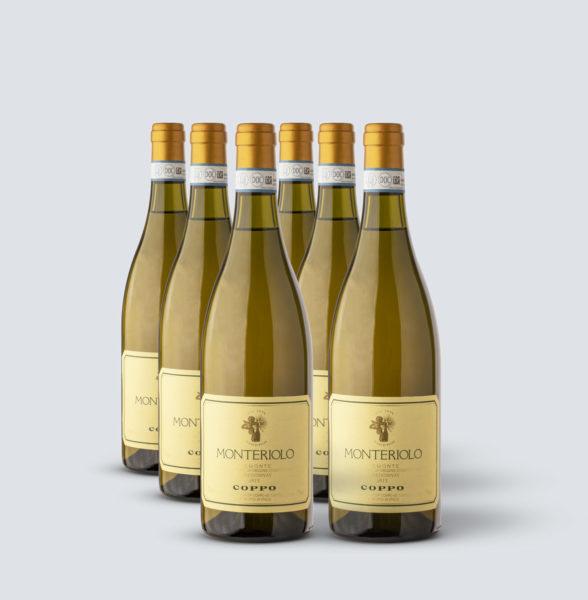 Chardonnay Monteriolo DOC 2013 - Coppo (6 bottiglie)