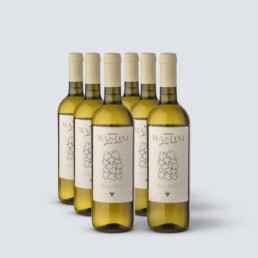 Vino Bianco Italia – Renato Masoni (6 bottiglie)