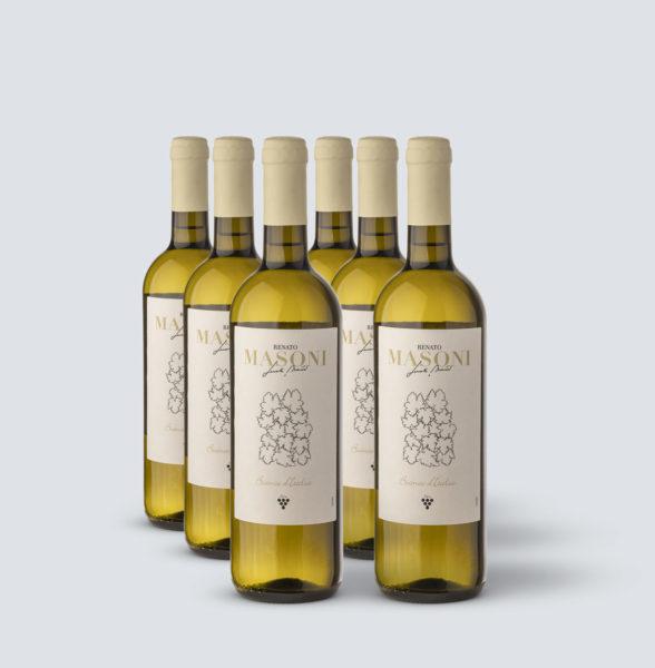 Vino Bianco Italia - Renato Masoni (6 bottiglie)